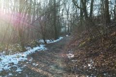 Randonnée pédestre 21 janvier 2017 - Marcy l'Etoile Mercruy