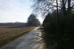 Randonnée pédestre 29 janvier 2017 - St André-de-Corcy